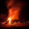 Beech Bonfire 2 © Steve Gregory 2014