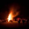 Beech Bonfire 3 © Steve Gregory 2014
