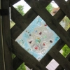 Glass panel in the trellis