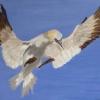 Stork (acrylic) © Ann Bishton 2016