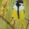 Great Tit (acrylic) © Annabel Young 2016