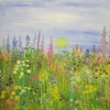 Summer Meadow © Annabel Young 2014