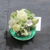 18 Helen Jayalath's winning Miniature Arrangement