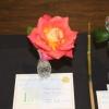 Best Single Rose