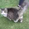 Bertie again - he really was big