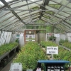One of the greenhouses