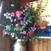 Camilla's magnificent arrangement in a milk churn