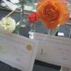 Single Rose winners