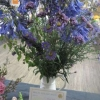 Floral Art - Single Colour Arrangement winner
