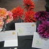 3 Dahlias winners