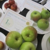 Three Apples winners