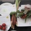 Best Fruit in my Garden today winners