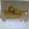 Painting - Still Life winner - Caroline Elderton's Apples