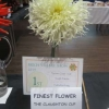 Finest Flower winner of the Diamond Award