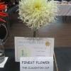 Finest Flower winner of the Diamond Award