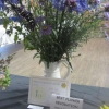 Best Flower Decoration winner of the Polly Chiverton Cup