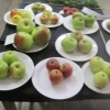 More Groups of three Apples