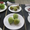 Group of three Pears