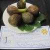 The winning figs
