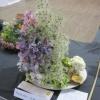 Floral Art - a nursery rhyme - Mary had a little Lamb