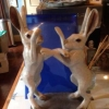More hares in the kitchen