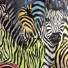 Zebras Crossing 2 (mixed media) © Sally Cox 2015
