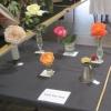 01 single rose exhibits