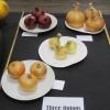 07 three onions