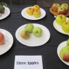 10 three apples