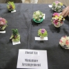 18 miniature arrangement