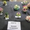 18 miniature arrangement