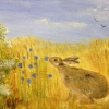 Hare (acrylic) © Sue Robinson 2015