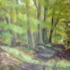 Woodland (acrylic) © Sue Robinson 2015