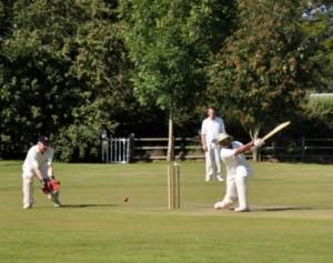 Cricket AOR2