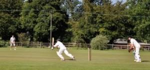 Cricket AOR3