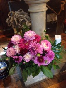 More Dahlias beneath the font
