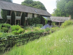 A glimpse of the back garden from the meadow