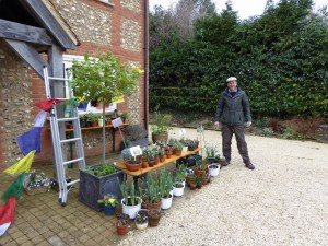 Nick selling the outdoor plants