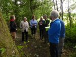 BGs – Alton Tree Walk – June 2017