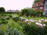 Beech Gardeners – spring into summer 2018